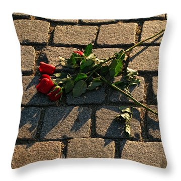 Throw Pillow featuring the photograph Rejected by Inge Riis McDonald