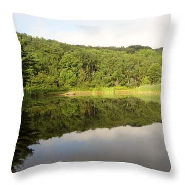 Throw Pillow featuring the photograph Relaxation by Michael Porchik