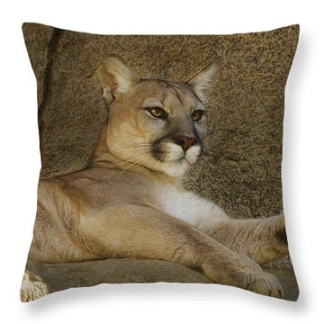 Throw Pillow featuring the photograph Relaxin' by Brian Cross