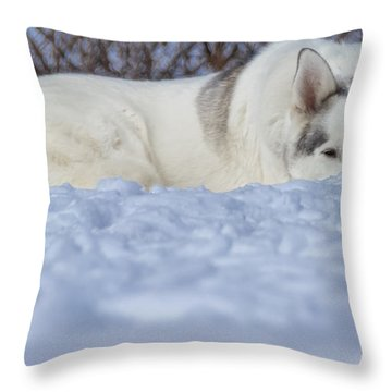 Relaxing In The Snow Throw Pillow