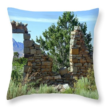 Remains Of A Dream Throw Pillow