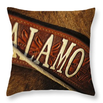 Throw Pillow featuring the photograph Remember The Alamo by Amber Kresge