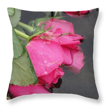 Throw Pillow featuring the photograph Remember by Tiffany Erdman