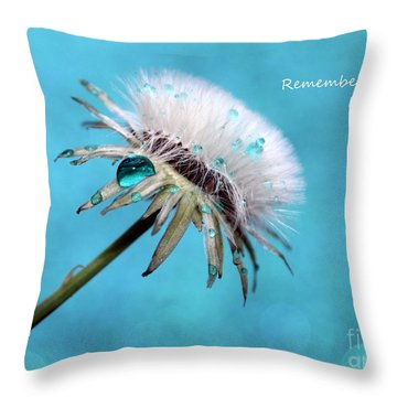 Remember When It Rained? Throw Pillow