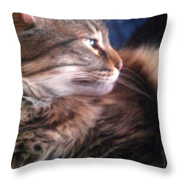 Throw Pillow featuring the photograph Remembering Bo by Jacqueline McReynolds