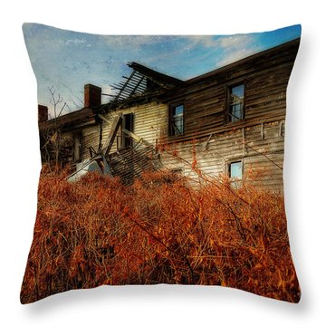 Remembering When Throw Pillow by Lois Bryan