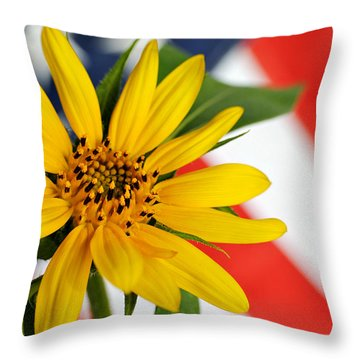 Remembrance Throw Pillow by Kelly Nowak