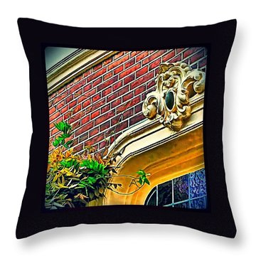 Remnants Of A Golden Past Throw Pillow by Hans Fotoboek
