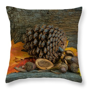 Remnants Of Fall Throw Pillow