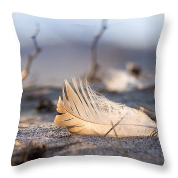 Remnants Of Icarus Throw Pillow by Bill Pevlor