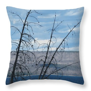 Throw Pillow featuring the photograph Remnants Of The Fire by Laurel Powell