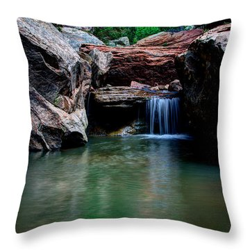 Remote Falls Throw Pillow by Chad Dutson