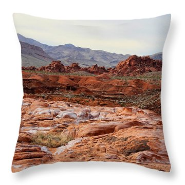 Throw Pillow featuring the photograph Remote by Tammy Espino