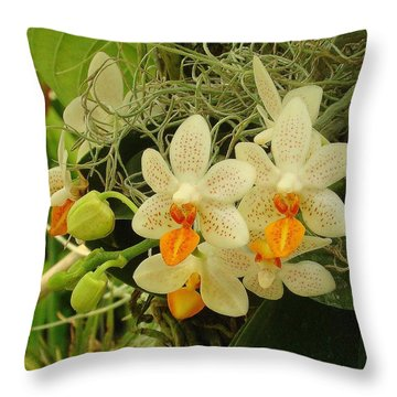 Renewal Throw Pillow by Rodney Lee Williams