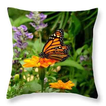 Renewed Throw Pillow by Rodney Lee Williams