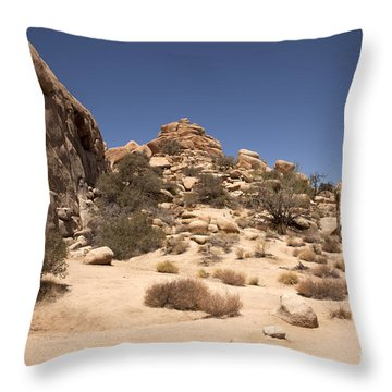 Repeating Yourself Throw Pillow by Amanda Barcon