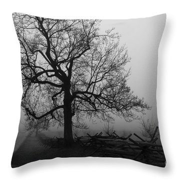 Repose In Mist Throw Pillow by David Rucker