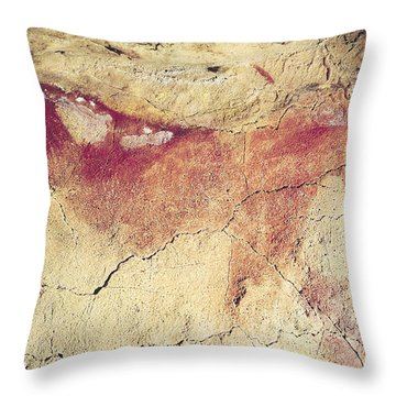 Representation Of An Animal, C.15000 Bc Cave Painting Throw Pillow