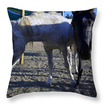 Rescued Mustangs Throw Pillow