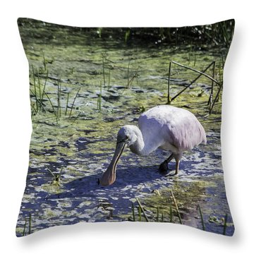 Reseate Spoonbill Vi Throw Pillow