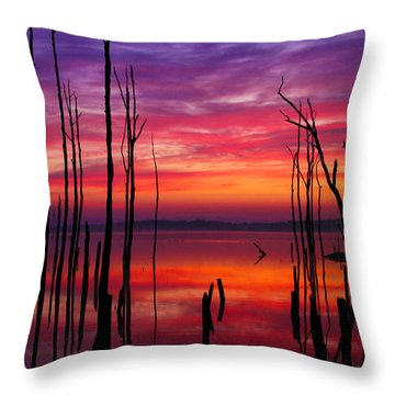 Reservoir At Sunrise Throw Pillow