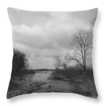 Reservoir In Winter  Throw Pillow by Sara  Raber