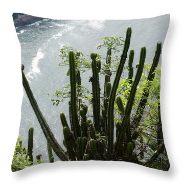 Resistent Throw Pillow by Zinvolle Art