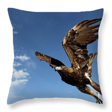 Resolution Throw Pillow by Bob Hislop