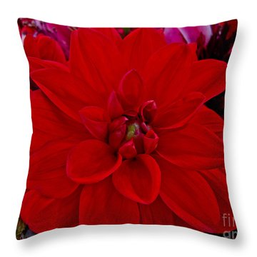 Resoundingly Red Throw Pillow by Arlene Carmel