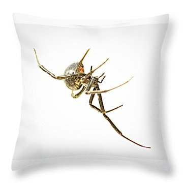 Respect The Lady Throw Pillow by Tammy Schneider