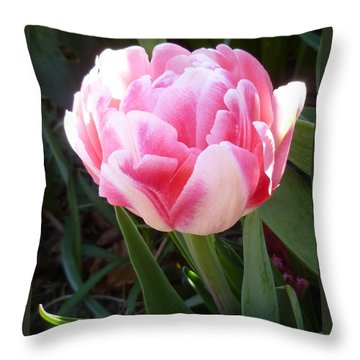 Resplendent Cherry Pink Tulip Throw Pillow by Lingfai Leung