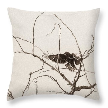 Rest Area I Throw Pillow by Marie-Dominique Verdier