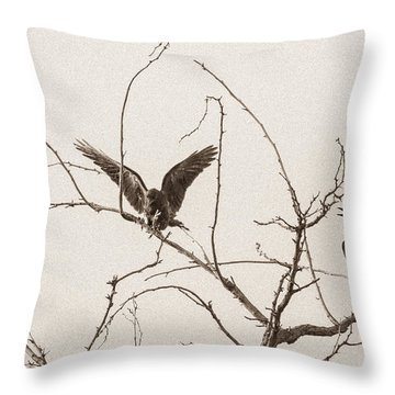 Rest Area II Throw Pillow by Marie-Dominique Verdier