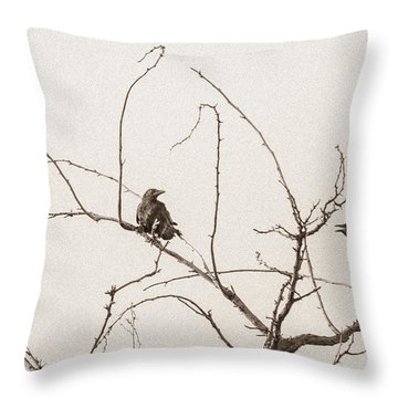 Rest Area IIi Throw Pillow by Marie-Dominique Verdier