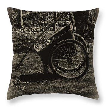 Throw Pillow featuring the photograph Rest Awhile by Mark Myhaver