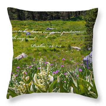 Rest For The Soul Throw Pillow by Lynn Bauer