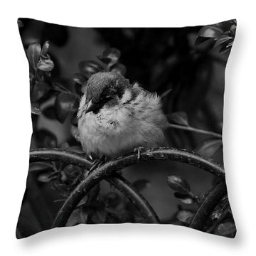 Rest For The Weary Throw Pillow