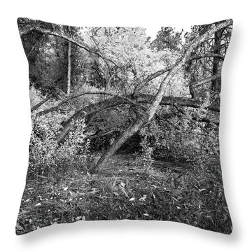 Throw Pillow featuring the photograph Tropical Shade by Roselynne Broussard