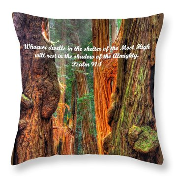 Rest In The Shadow Of The Almighty - Psalm 91.1 - From Sunlight Beams Into The Grove At Muir Woods Throw Pillow