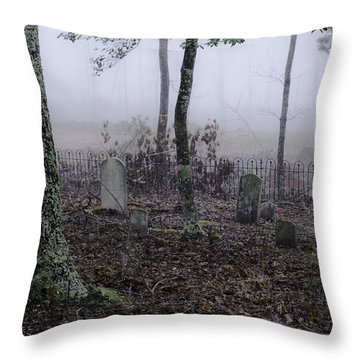Throw Pillow featuring the photograph Rest by Laura DAddona