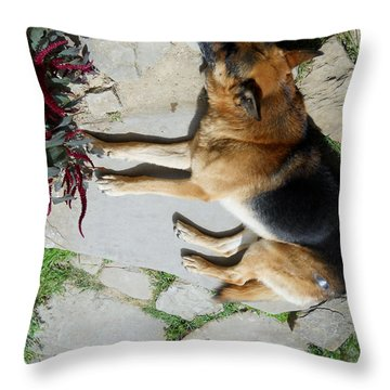 Throw Pillow featuring the photograph Rest by Ramona Matei
