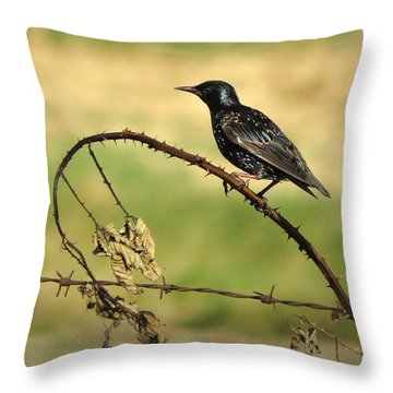 Rest Stop 6 - Oregon Throw Pillow