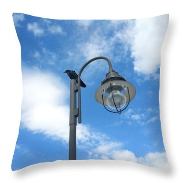 Rest Stop For The Harbinger Throw Pillow by Lon Casler Bixby