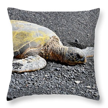 Throw Pillow featuring the photograph Rest Time by David Lawson