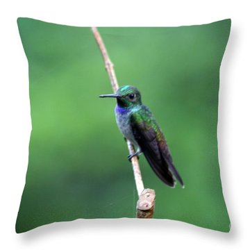 Resting Throw Pillow by Bob Hislop