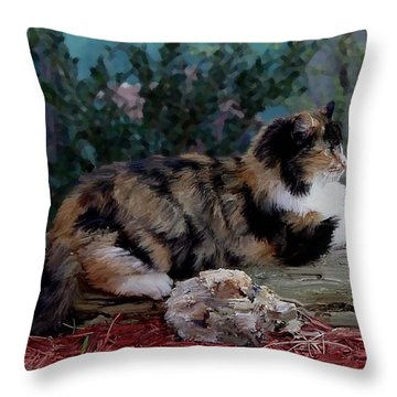 Resting Calico Cat Throw Pillow