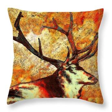 Resting Elk Throw Pillow by Jack Zulli
