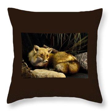 Resting Fox Throw Pillow