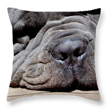 Throw Pillow featuring the photograph Resting His Wrinkles by Carlee Ojeda