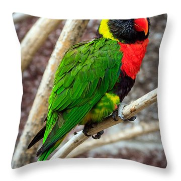 Throw Pillow featuring the photograph Resting Lory by Sennie Pierson